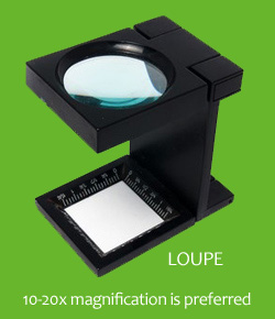 Magnifier Loupe